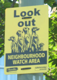 Neighbourhood Watch meerkats
